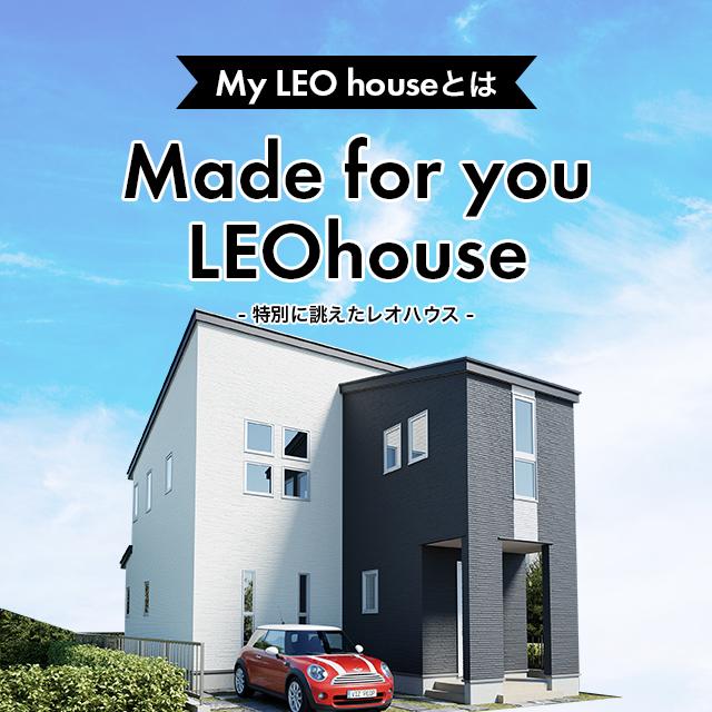 My LEO house